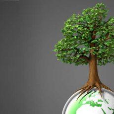 Umweltmanagement_Einführung_2