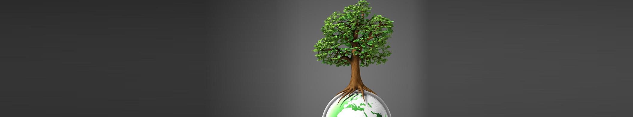 Umweltmanagement_Einführung_2_Banner