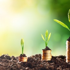 Umweltmanagement ISO 14001 - Anforderungen Umweltziele