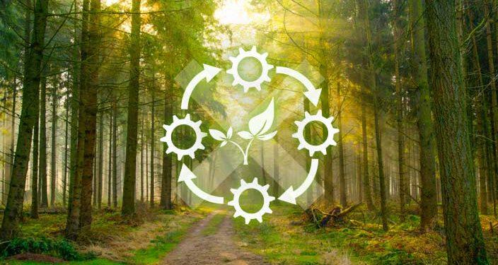 Nichtkonformitäten_Umwelt