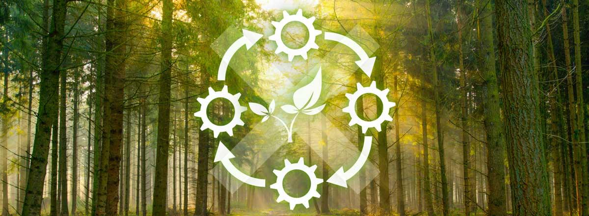 Nichtkonformitäten_Umwelt_Banner