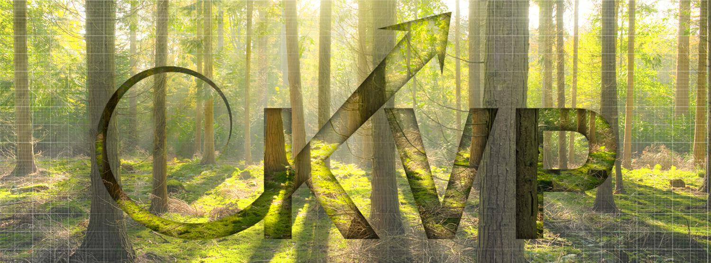 Kontinuierliche Verbesserung im Umweltmanagement ISO 14001_Banner