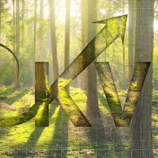 Kontinuierliche Verbesserung im Umweltmanagement ISO 14001
