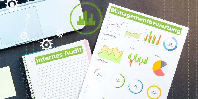 Internes Audit ISO 9001 Managementbewertung ISO/TS 9002_Blogbild