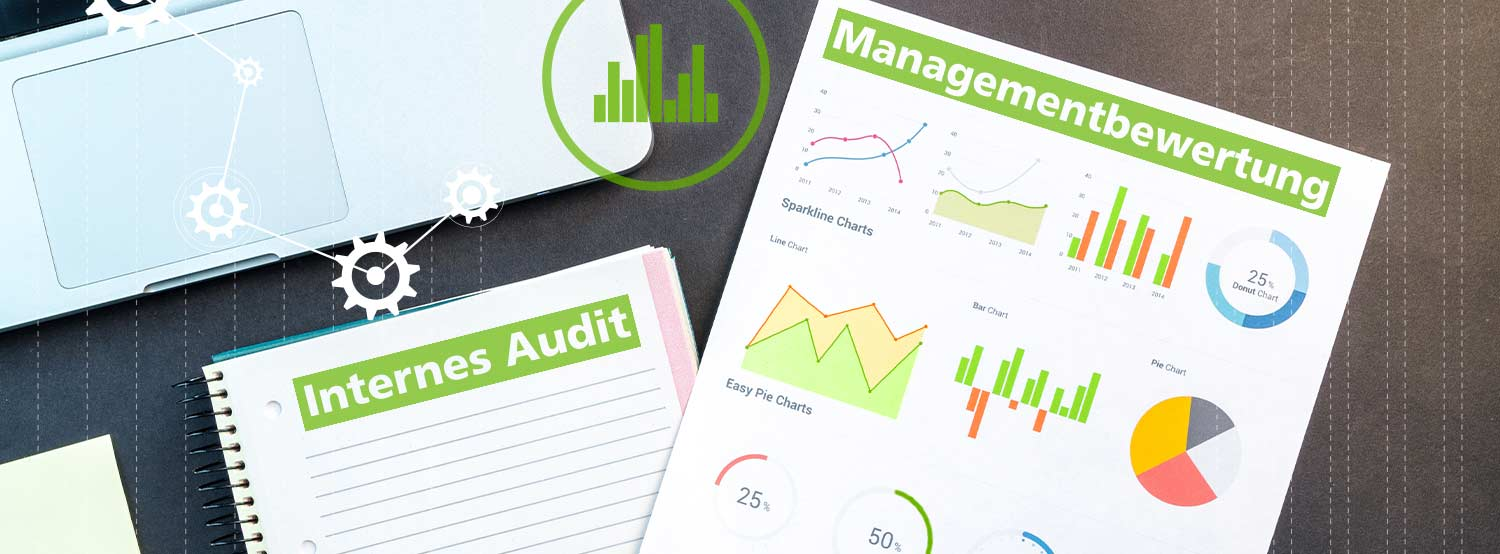 Internes Audit ISO 9001 Managementbewertung ISO/TS 9002_Banner