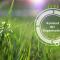 ISO 14001 Kontext der Organisation bestimmen - Beitragsbild