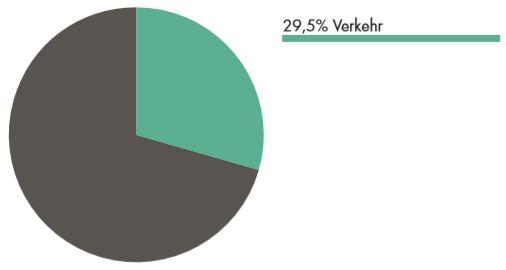 Anteil Verkehr am Energieverbrauch